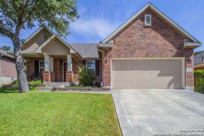 San Antonio Single Family Home New: 1015 Lariat Cove