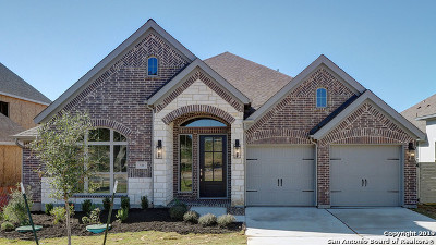 New Braunfels Single Family Home New: 511 Orchard Way