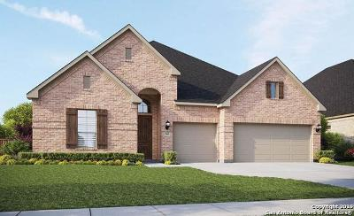 Boerne Single Family Home New: 103 Destiny Drive