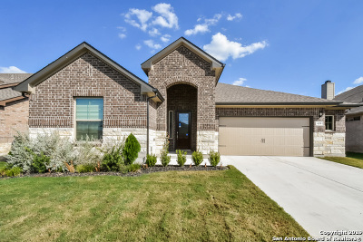 New Braunfels Single Family Home For Sale: 430 Pecan Meadows