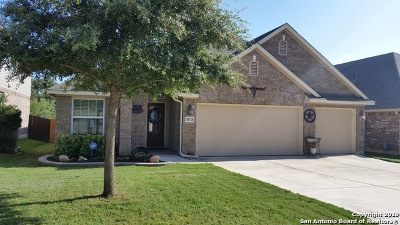 Helotes Single Family Home New: 10728 Barnsford Ln