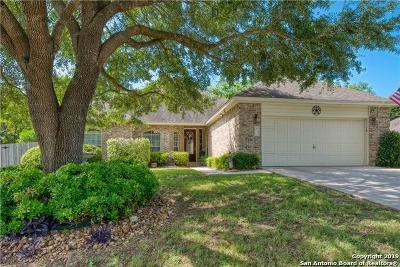 New Braunfels Single Family Home New: 1311 Brenham Circle