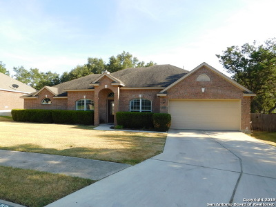 Stone Oak Single Family Home New: 1302 Cadley Ct