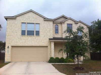 Helotes Single Family Home New: 10803 Pansy Path