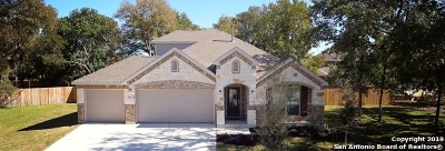 Schertz Single Family Home For Sale: 10312 Hoot Owl