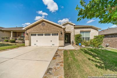 Alamo Ranch Single Family Home New: 4022 Deep River
