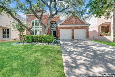 Stone Oak Single Family Home New: 1329 Holmes Ln