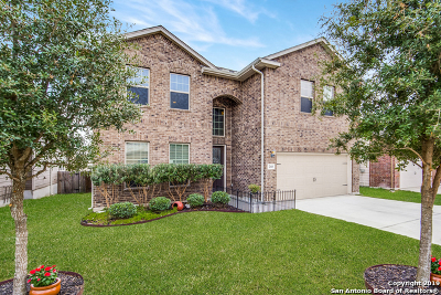 Cibolo Single Family Home New: 260 Prairie Vista