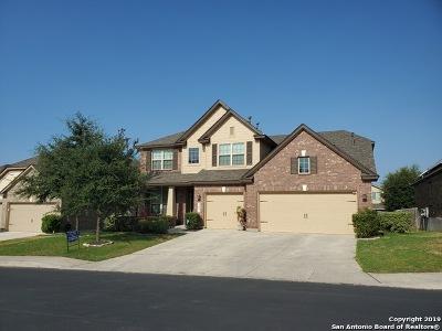 San Antonio Single Family Home New: 25027 Seal Cove
