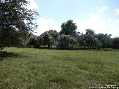 Wilson County Farm & Ranch For Sale: 00 S Fm 1107