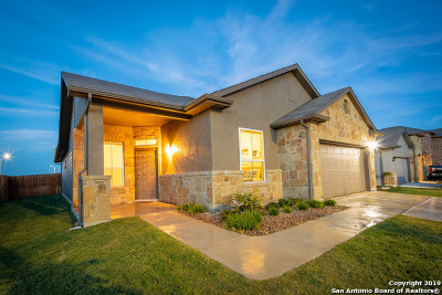 New Braunfels Single Family Home New: 1363 Fall Cover
