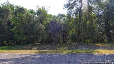 San Antonio Residential Lots & Land Back on Market: Lot 10 Cr 3829