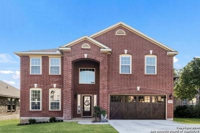 San Antonio Single Family Home New: 26206 Destiny Ridge