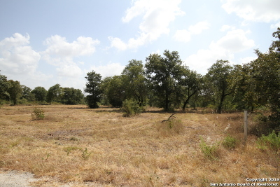 Atascosa County Residential Lots & Land New: Lot 32 Clear Lake Loop