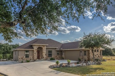 New Braunfels Single Family Home New: 1017 Blend Way