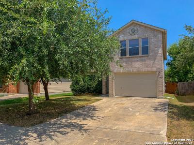 San Antonio Single Family Home New: 11023 Barclay Pt