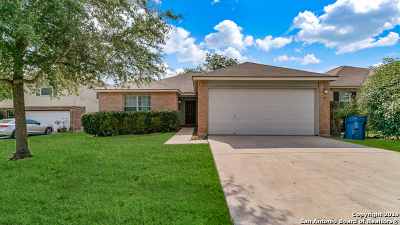 Cibolo Single Family Home New: 133 Dewberry Park