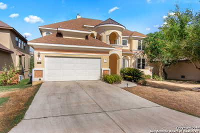 San Antonio Single Family Home New: 55 Michelangelo