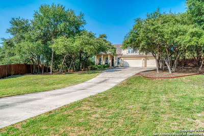 New Braunfels Single Family Home New: 929 San Fernando Ln