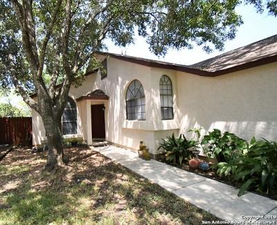 San Antonio Single Family Home New: 13039 Beacon Park Dr