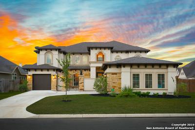 Boerne, Fair Oaks Ranch, Leon Springs Single Family Home New: 7994 Valley Crest