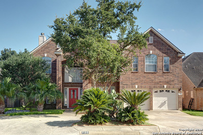 Stone Oak Single Family Home New: 736 Mello Oak