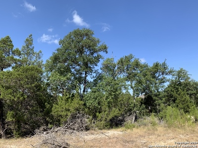 New Braunfels Residential Lots & Land New: 452 Paradise Hills