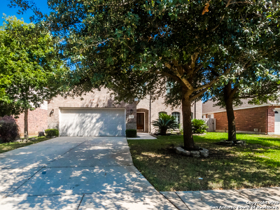 San Antonio Single Family Home New: 1203 Willow Knoll