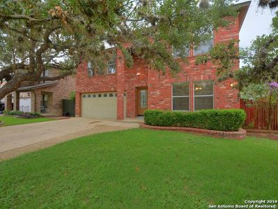 San Antonio Single Family Home New: 6651 Shadow Run