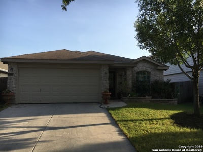Helotes Single Family Home New: 11038 Caspian Spring