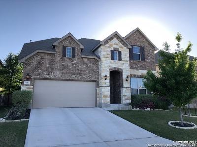 Alamo Ranch Rental New: 4807 Palma Nova St