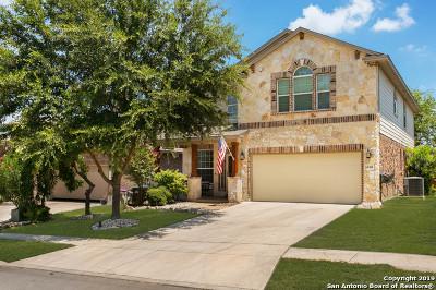 Alamo Ranch Single Family Home New: 6530 Palmetto Way