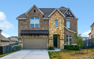 San Antonio Single Family Home New: 24519 Chianti Way