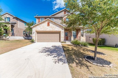 Cibolo, Schertz, New Braunfels Single Family Home New: 3125 Mason Creek