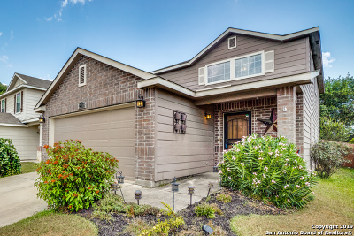 San Antonio Single Family Home New: 25208 Cambridge Wall