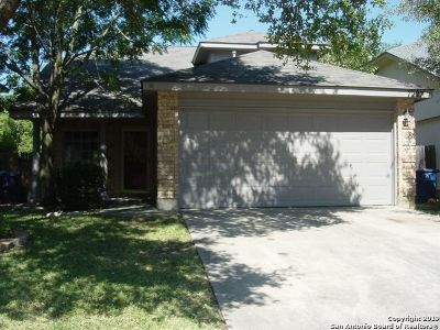 San Antonio Single Family Home New: 7227 Burns Ln