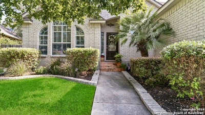 San Antonio TX Single Family Home New: $339,000