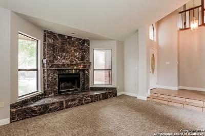 San Antonio Single Family Home New: 3207 Green Spg