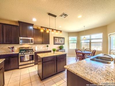 San Antonio Single Family Home New: 8803 Padie Summit