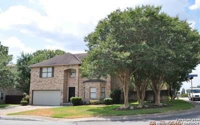 Stone Oak Single Family Home New: 1326 Summit Bluff