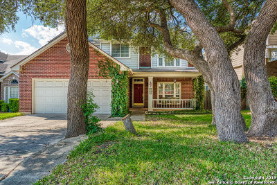 San Antonio TX Single Family Home New: $265,000
