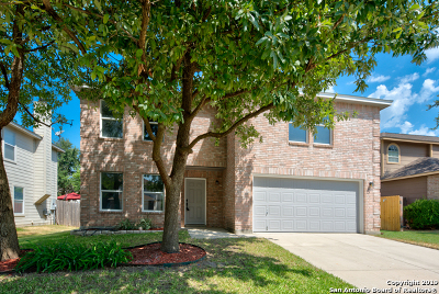 San Antonio TX Single Family Home New: $244,000