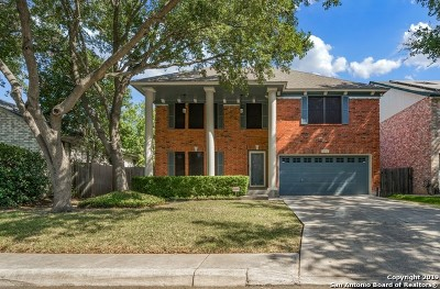 San Antonio Single Family Home New: 3523 Eagle Canyon Dr
