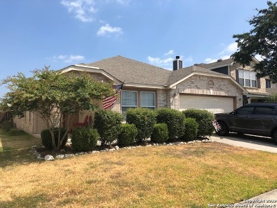 San Antonio Rental New: 25537 Gold Yarrow