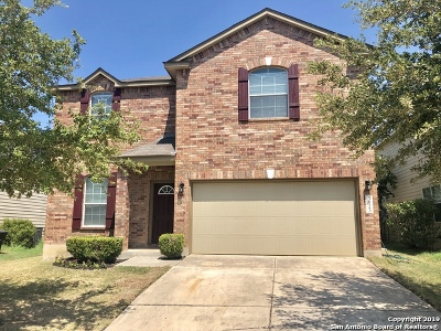 San Antonio Single Family Home New: 3823 Relampago