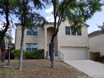 San Antonio Single Family Home New: 712 Clover Creek