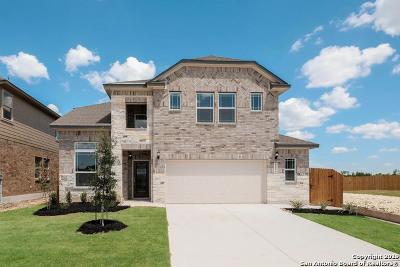 San Antonio Single Family Home New: 12119 Casparis
