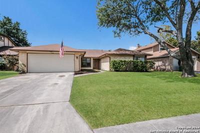 San Antonio Single Family Home New: 3314 Jenkins Dr