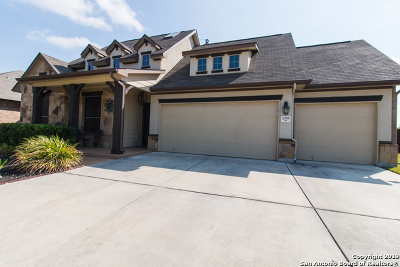 Guadalupe County Single Family Home New: 2055 Pecan Springs