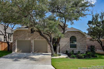 Fair Oaks Ranch Single Family Home New: 9007 Pond Gate